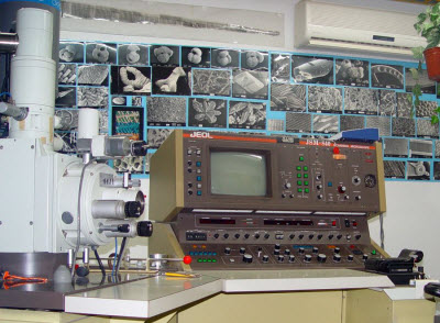 scanning electron beam microscope