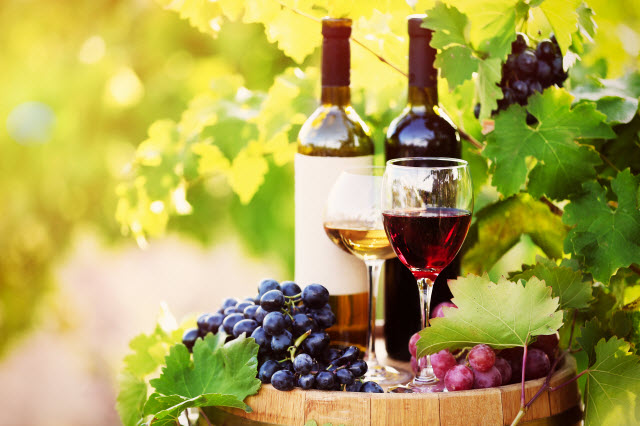 Wine Proficiency Testing Expands | Lab Manager