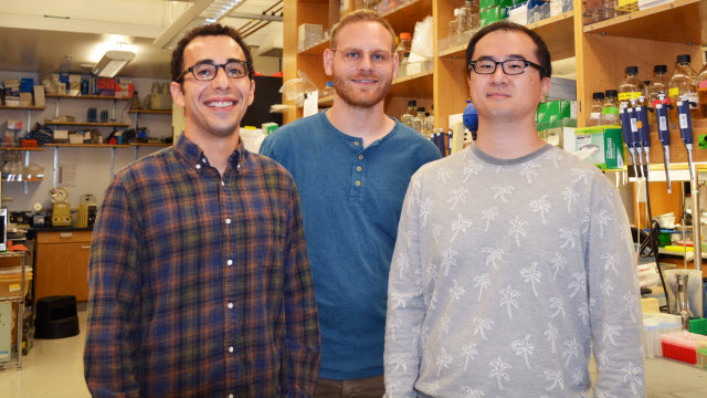 Scripps research team
