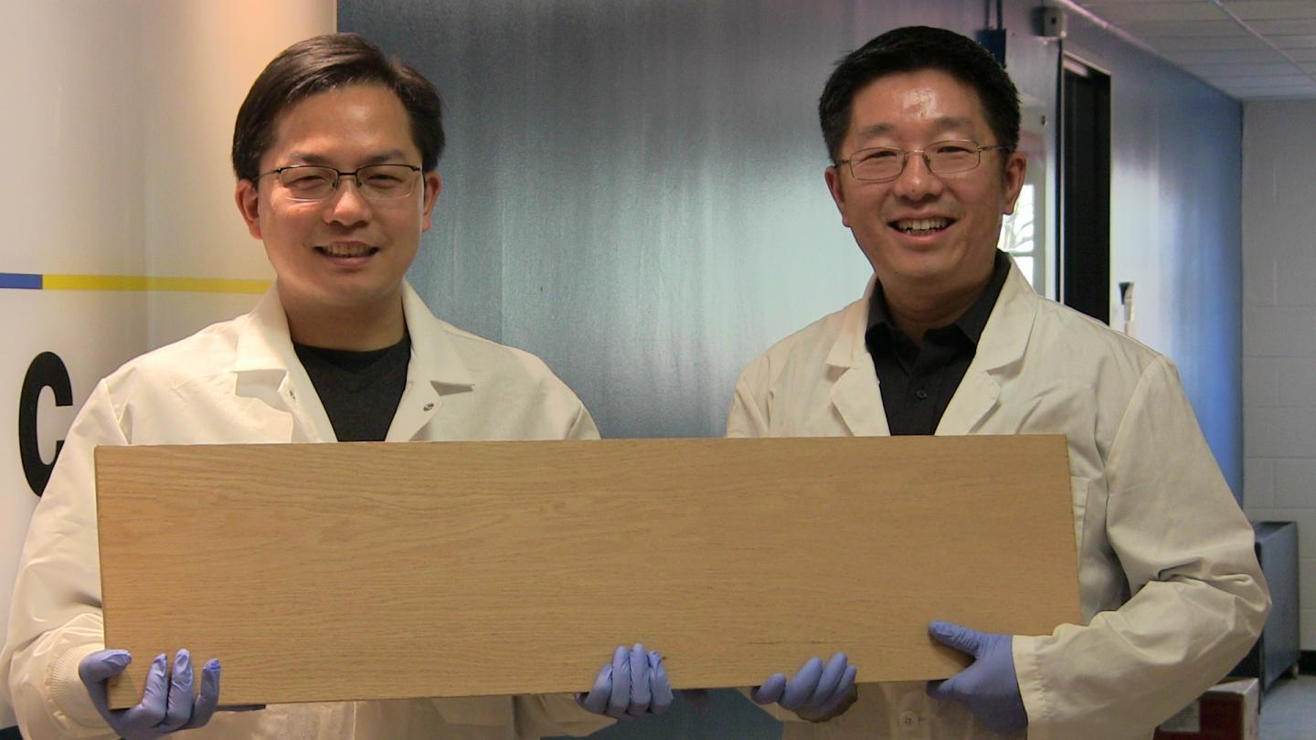 Researchers create super wood stronger than most metals