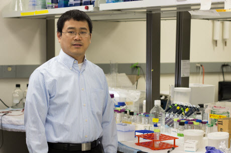 Shengxi Chen, researcher with the Biodesign Institute's center for BioEnergetics