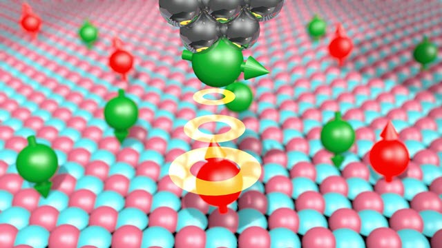 Single magnetic atoms are deposited on a surface of magnesium oxide