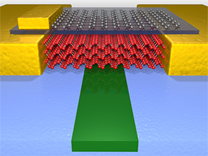 high performance photodetector