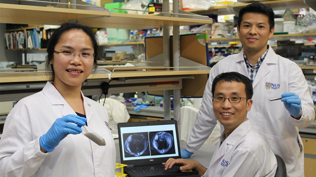 NUS scientists develop novel chemical