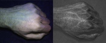 vein and skin texture patterns that are unique to each individual