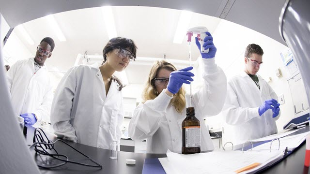 Students in the First-Year Research Immersion program work in a laboratory