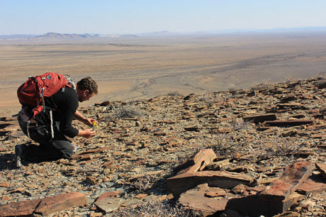 Simon Darroch in Namibia searching for fossils