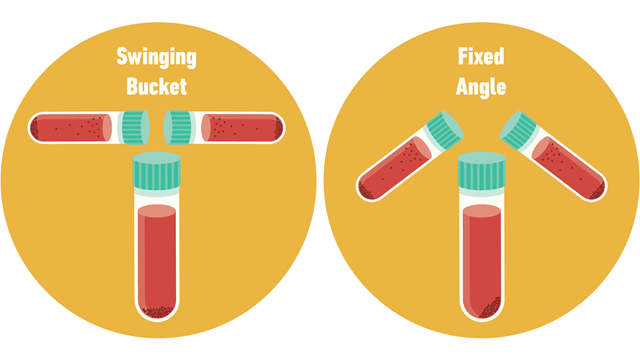 A diagram explaining swinging bucket centrifuge and fixed angle centrifuge with test tubes