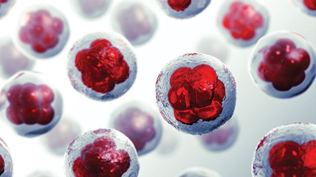 INSIGHTS on 3D Cell Culture and Organs-on-Chips | Lab Manager