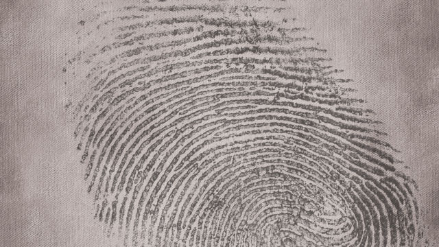 INSIGHTS on the Growing Fingerprint Challenge