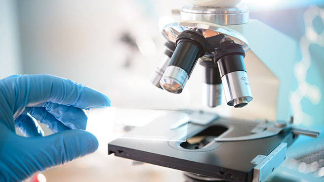 Image result for laboratory microscope
