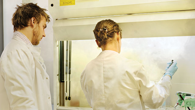 Determining Which Fume Hood Design Is Right for Your Research Application