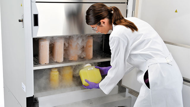 The Thermo Scientific™ XBF40 series of -40°C blast freezers