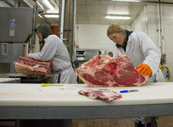 The University of Wyoming's Meat Lab student workers get various meat cuts ready
