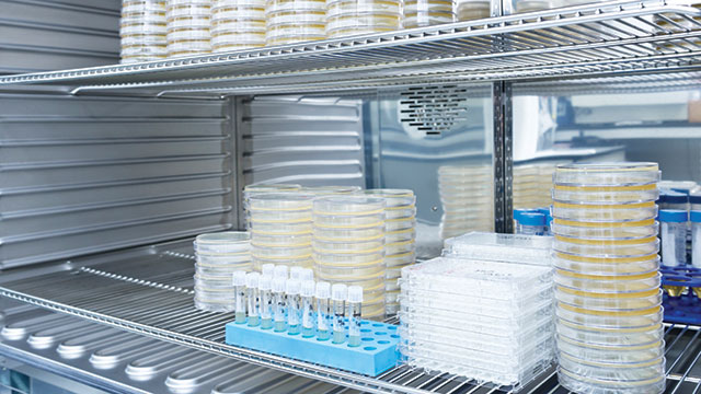 Finding the Perfect CO2 Incubator for Your Lab's Needs