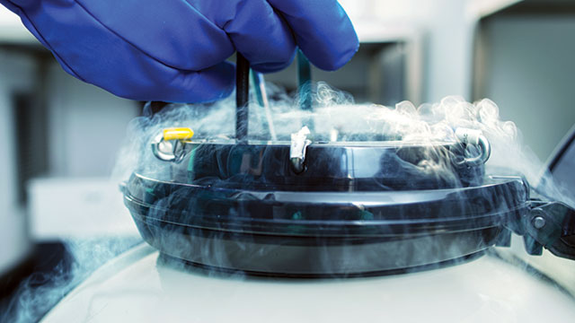 Working with Liquid Nitrogen
