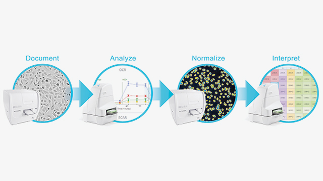 Lab manager how normalizing biological data works ccuart Image collections