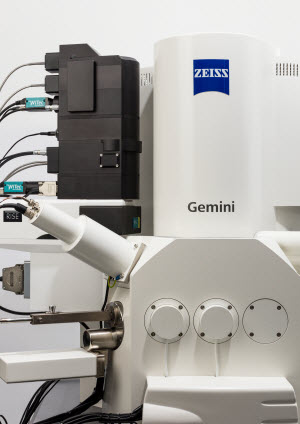 ZEISS Sigma 300 with WITec RISE microscopy